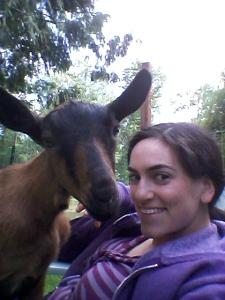 goats_May (6)